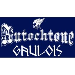 détails du t-shirt bleu marine manches longues autochtone gaulois. mention gaulois.