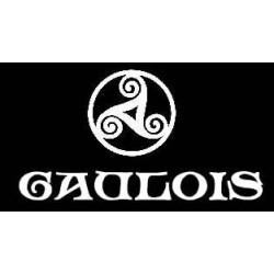détails tee-shirt noir manches longues triskel celtique avec mention gaulois.