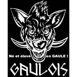 """détails du sweat-shirt Manches longues Noir sanglier Gaulois avec mention """"né et élevé en gaule !""""."""