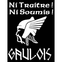 """détails du motif sweat-shirt Noir grande tête de Gaulois avec mention """"ni traitre, ni soumis !"""".gaulois !"""
