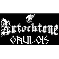 """détails du Sweat capuche Autochtone Gaulois mention """"Gaulois en runes"""". petit modèle."""