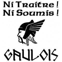 """Détail du motif t-shirt Gaulois avec devise """"Ni traitre, ni soumis""""."""